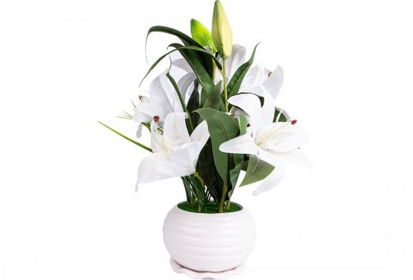 Dekonaz Dekoratif Çiçek Seramik Saksılı | Beyaz | Sas-0003