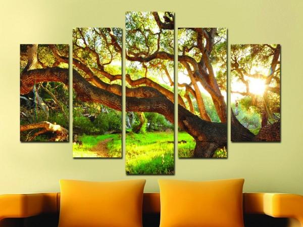 5 Parça Tablo - Dev Ağaç Orman